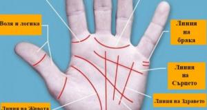 Какво показва дланта ви