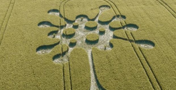 Коронавирусно съобщение от извънземни се появи на поле в Англия ВИДЕО