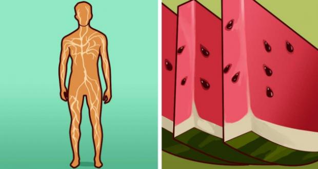 Ето какво се случва с организма ви когато консумирате диня. Ползите са неочаквани но ясно видими