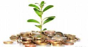 4 зелени магнита за пари у дома - растенията които ще ни направят богати ако ги засадим вкъщи