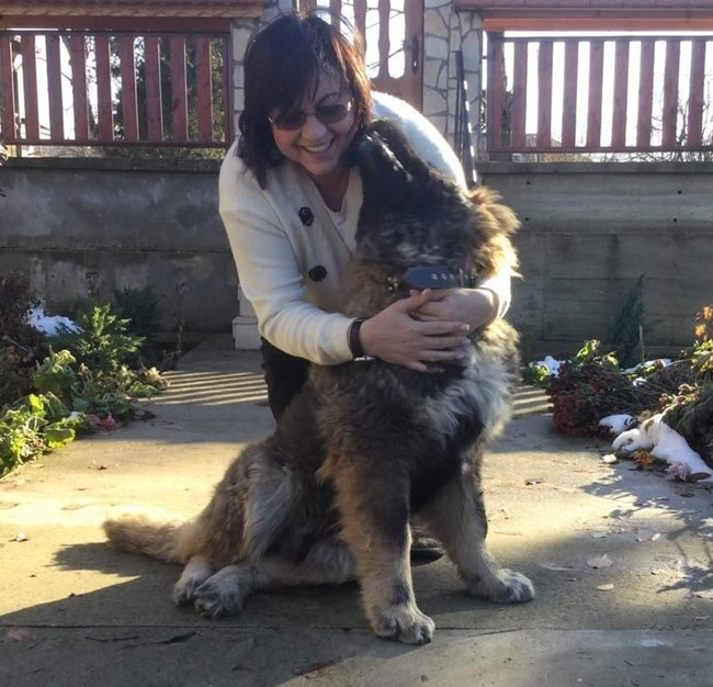Корнелия Нинова куче