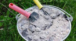 Съветите на баба за използването на дървесната пепел в градината