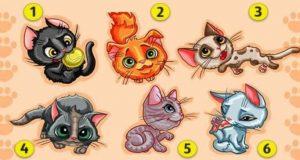 Избери най-сладкото котенце и то ще ти прошепне една тайна: